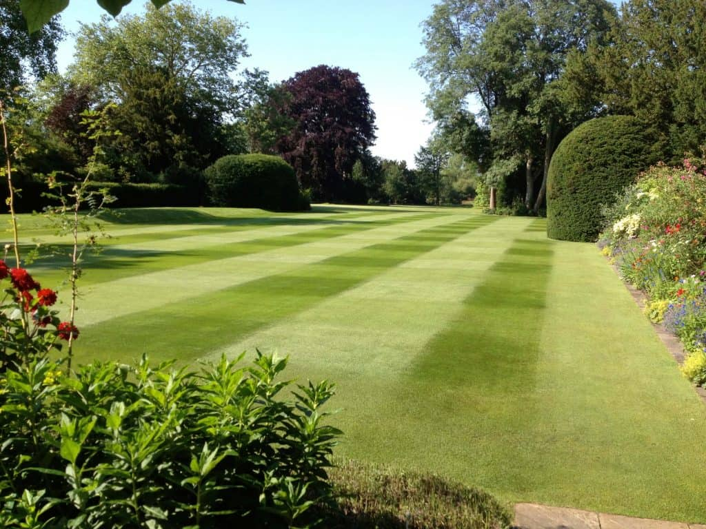 Cylinder mown lawn at 15mm