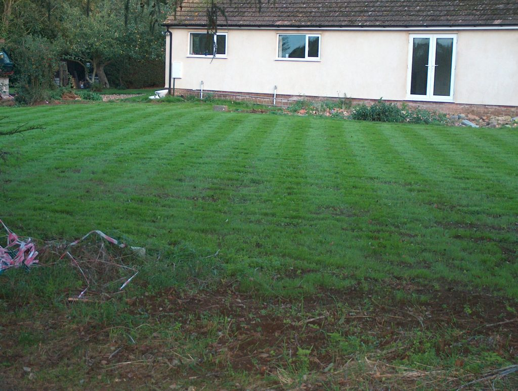 lawn for reseeding